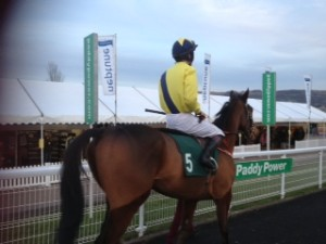 Cheltenham Meeting taken by AC Services Southern Owner