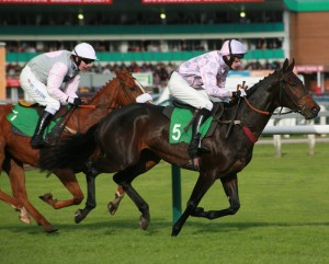 Grand National horses and facts